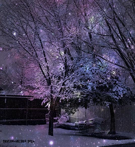 winter_2014winterstruck_2014